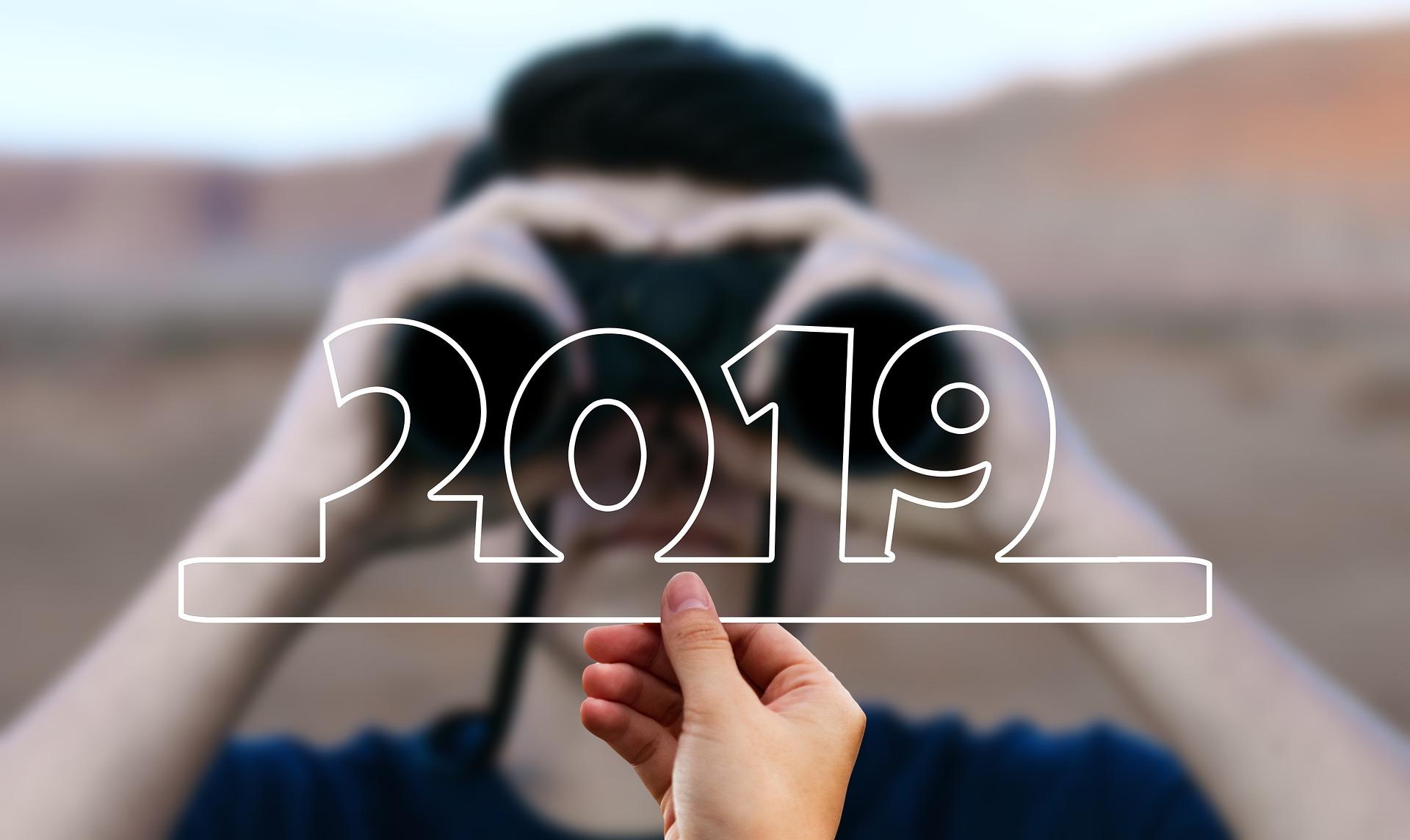 terugblik 2019 en vooruitzicht 2020